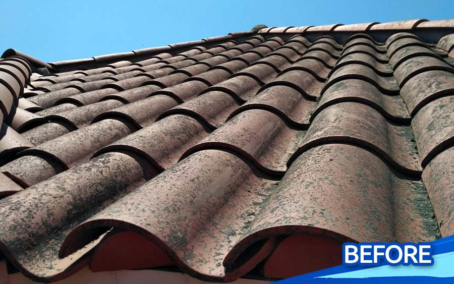 Low-Pressure-Steam-Cleaning-Tile-Roof-Stain-Cleaning-North-County-San-Diego-CA-gallery-03